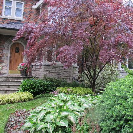 Practical Front Yards Image